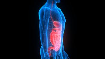 Gut microbes - the human digestive system
